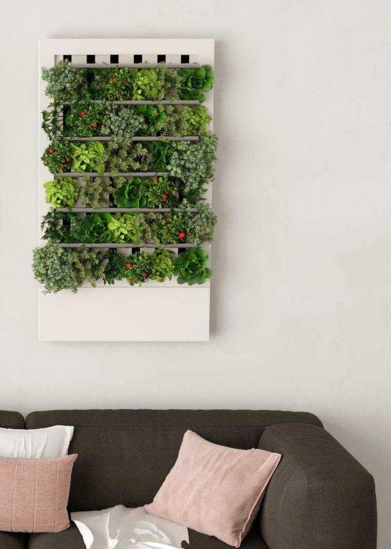 Smart home indoor growing kit - Essential model #smart #smartgarden #indoorgarden